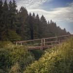 Brücke, Villingen